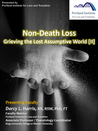 Poster - NDL II